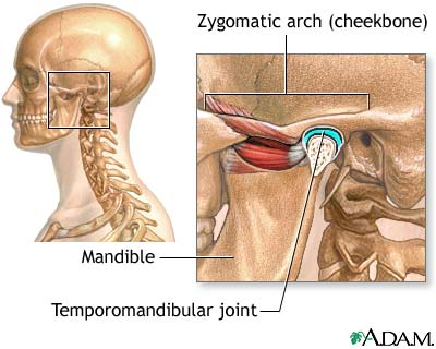 anatomia_atm